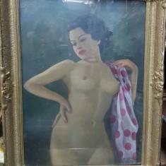 D. H. Suciu, Nud