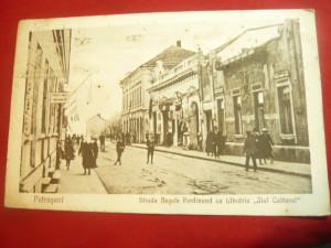 Ilustrata Petrosani - Str.Regele Ferdinand Ed Libr. Jiul Cultural Petrosani 1924