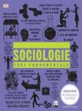 Sociologie. Idei fundamentale/***