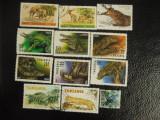Serie timbre fauna animale repite stampilate Tanzania timbre filatelice postale