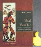 Povestiri hasidice despre minunile lui Rabbi Israel  Meyer Levin
