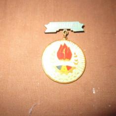 insigna pionier c19