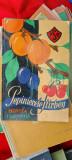 PEPINIERELE STIRBEY - BUFTEA 1937 - 1938 , CATALOG DE PREZENTARE  1938