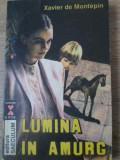 LUMINA IN AMURG-XAVIER DE MONTEPIN