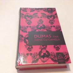DAMA CU CAMELII--DUMAS FIUL---RF17/2