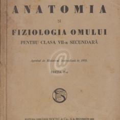 Anatomia si fiziologia omului pentru clasa VII-a secundara