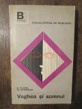 VEGHEA SI SOMNUL- R. FLORU, M. STERIADE