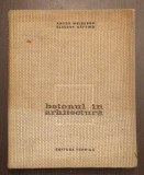 BETONUL IN ARHITECTURA - CONF. ARH. ANTON MOISESCU, ING. ELEODOR SAFTOIU