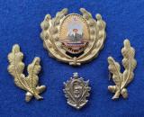 Insigna Militara Ofiter GENIU PIONIERI - Coifura insemn cascheta SEMN DE ARMA