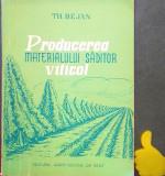 Producerea materialului saditor viticol Theodor Bejan