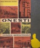 Onesti - Cetatea petrochimiei Mihai Gheorghe Andries
