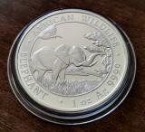 SOMALIA - 100 Shillings 2019 - in capsula - Elefant - argint 31.1 gr. - 999/1000