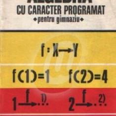Algebra cu caracter programat pentru gimnaziu