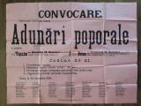 Afis 1905 Partidul National Roman Adunari poporale Vascau Beius