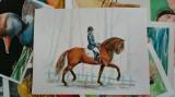 Acuarela - plimbarea de dimineata (tablouri tablou picturi pictura)