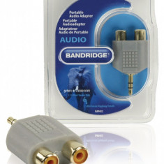 Adaptor audio 1x jack stereo tata 3.5 mm – 2x RCA m – f, Bandridge BAP432