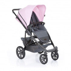 Carucior 2 in 1 Salsa 4 Rose ABC Design 2019