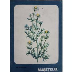 Musetelul