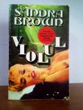 Sandra Brown – Violul (thriller)