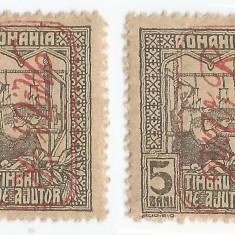 România, Poşta milit. germ., LP 9a/1917, Timbru aj. supr. M.V.i.R., eroare, MNH
