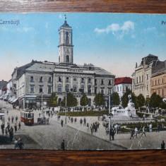 CERNAUTI - PRIMARIA - ANUL 1930 - ANIMATIE, Necirculata, Fotografie