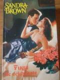 Fuga De Celebritate - Sandra Brown ,309828