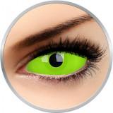 Glow Spwan - lentile de contact colorate verzi anuale - 360 purtari (2 lentile/cutie)
