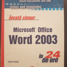 MICROSOFT OFFICE EXCEL 2003 IN 24 DE ORE - Reisner