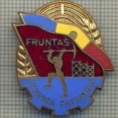Y 844 INSIGNA - FRUNTAS IN MUNCA PATRIOTICA  -PENTRU COLECTIONARI