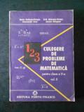 CULEGERE DE PROBLEME DE MATEMATICA PENTRU CLASA A X-A  volumul 2