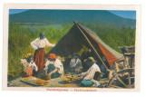 5134 - SIBIU, Ethnics Gypsy, Romania - old postcard - unused - 1917
