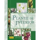 Dorte Nissen - Plante de interior