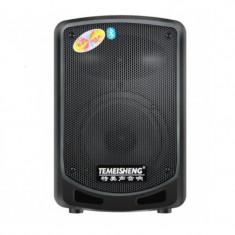 Boxa bluetooth tip troler Temeisheng A6-10, microfon WI-FI, cititor stick, card SD, radio FM