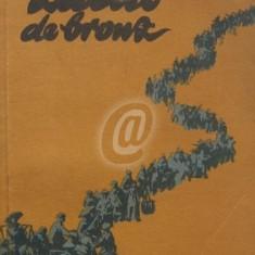 Zidul de bronz (ESPLA)