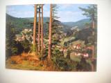 HOPCT 74541  HERRENALB   GERMANIA-NECIRCULATA