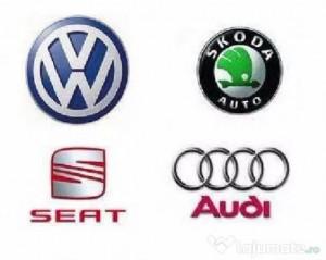 Test/ Diagnoza / codari VAG Audi, VW, Skoda, Seat