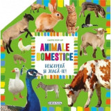 Carte pop-up - animale domestice PlayLearn Toys