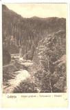 SV *  COLIBITA  *  VEDERE PARTIALA  *  Raul Bistrita  *  1928