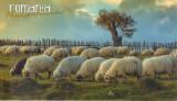 Carte postala Bucovina SV140 Gura Humorului - La ceas de seara - necirculata