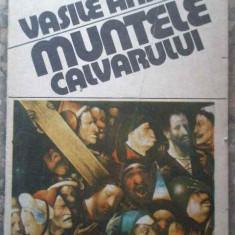 Muntele Calvarului - Vasile Andru ,276744