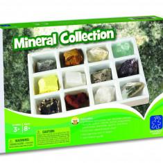 Kit paleontologie - Minerale PlayLearn Toys
