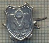 Y 1658 INSIGNA - MILITARA -SEMN DE ARMA -MILITIE -RSR  -PENTRU COLECTIONARI