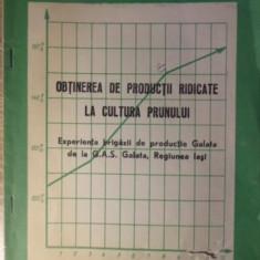 OBTINEREA DE PRODUCTII RIDICATE LA CULTURA PRUNULUI - EXPERIENTA BRIGAZII DE PRO