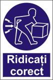 Indicator Ridicati corect - Semn Protectia Muncii, 4World