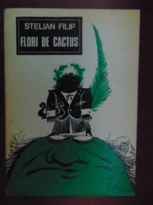 Flori de cactus- Stelian Filip foto