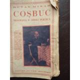 Cosbuc biografia si opera poetica - Octav Minar, Polirom, 2016