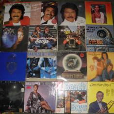 vinyl/vinil Beach Boys,Engelbert,Whitney Houston,Alison Moyet,Middle of Road