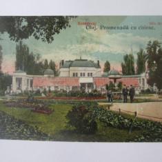 Cluj Napoca-Promenada cu chiosc,carte postala circulata 1924