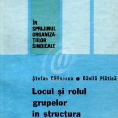 Locul si rolul grupelor in structura si activitatea sindicatului