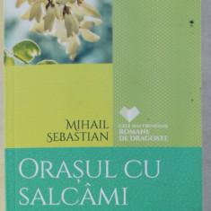 ORASUL CU SALCAMI / ACCIDENTUL de MIHAIL SEBASTIAN , 2016
